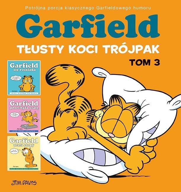 Garfield. Tłusty koci trójpak, tom 3
