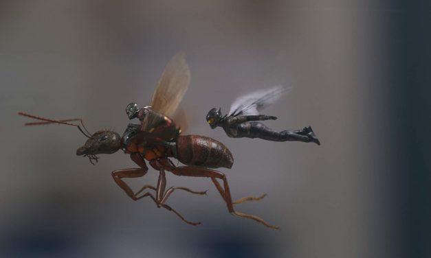Ant-Man i Osa – recenzja