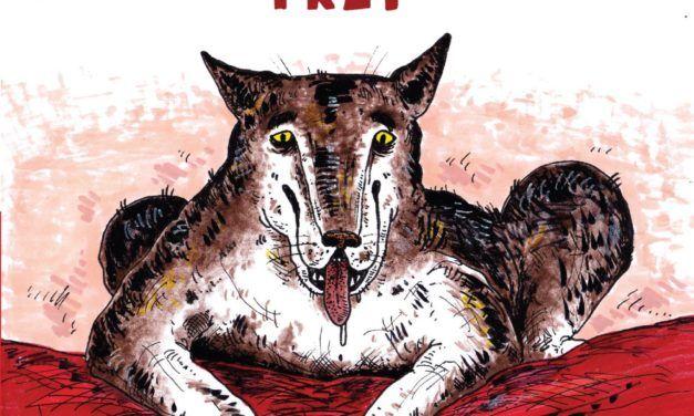 Timof Comics – sierpień 2020 – zapowiedzi